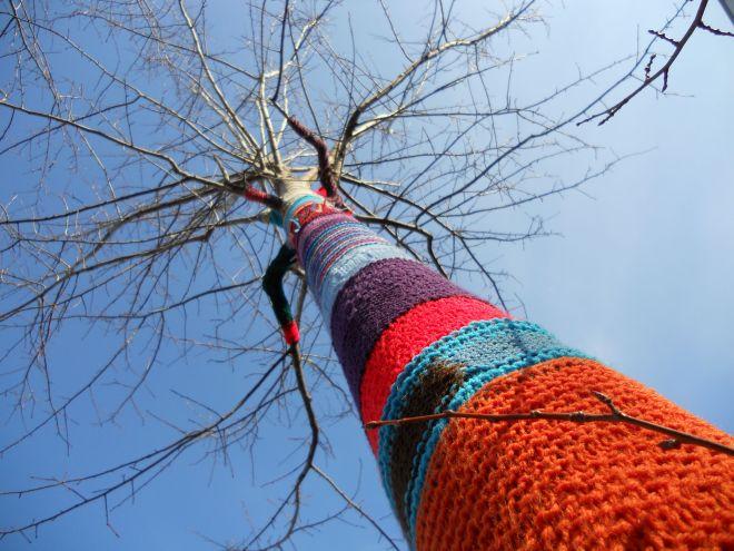 Treestocking