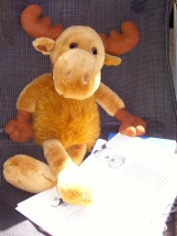 121002 2 Olaf studying